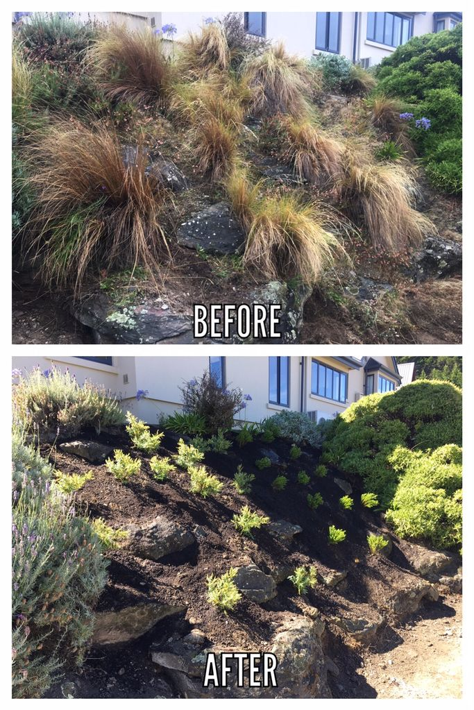 Queenstown Garden Company Before and After