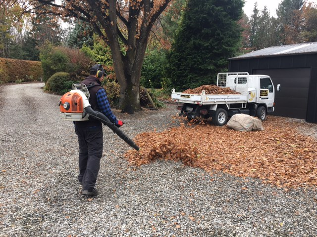 Gardener Queenstown Clearing Leaves