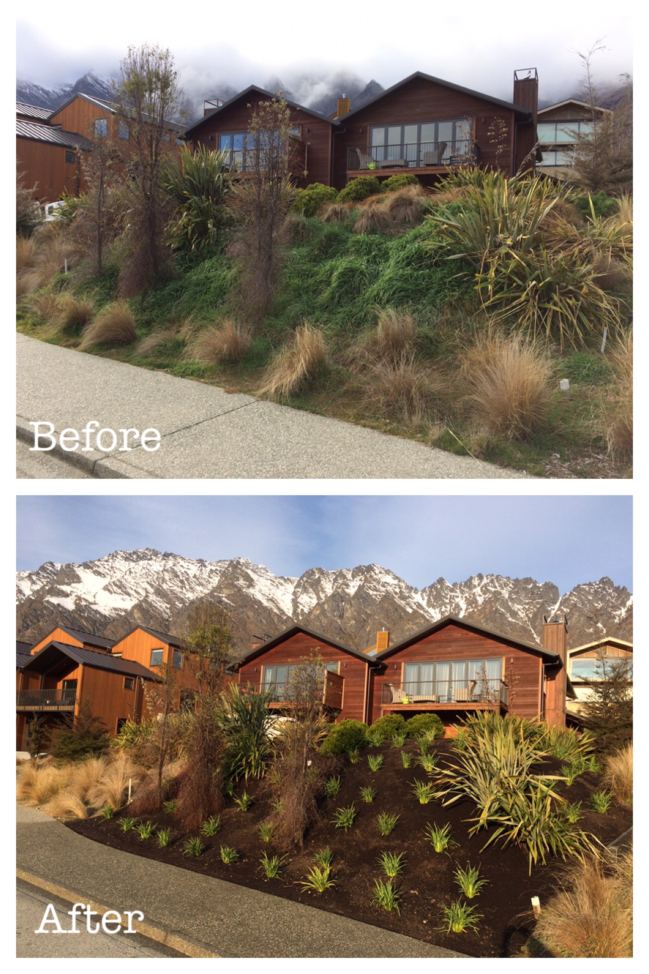Queenstown Garden Before and After
