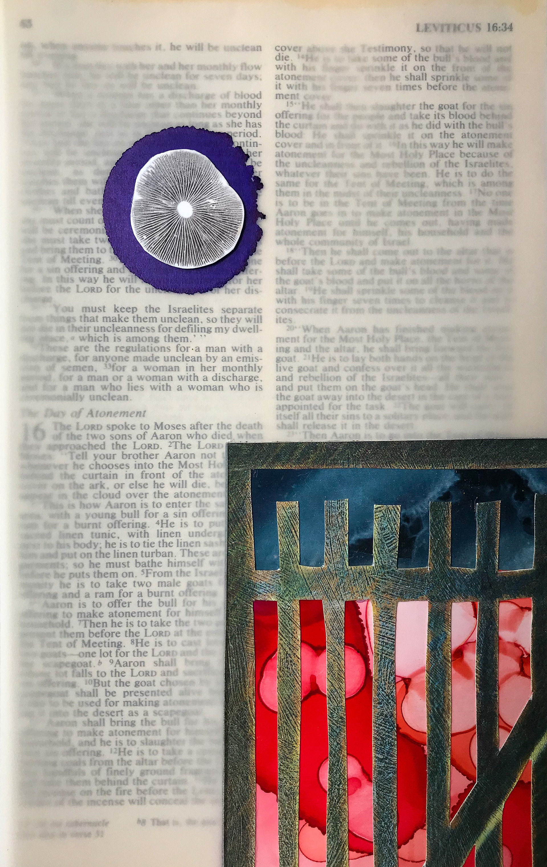 Confined Collage, Vellum, Alcohol Ink, and Spore Print on Bible 2020