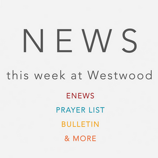 NEWS Stacked_webSquare.png