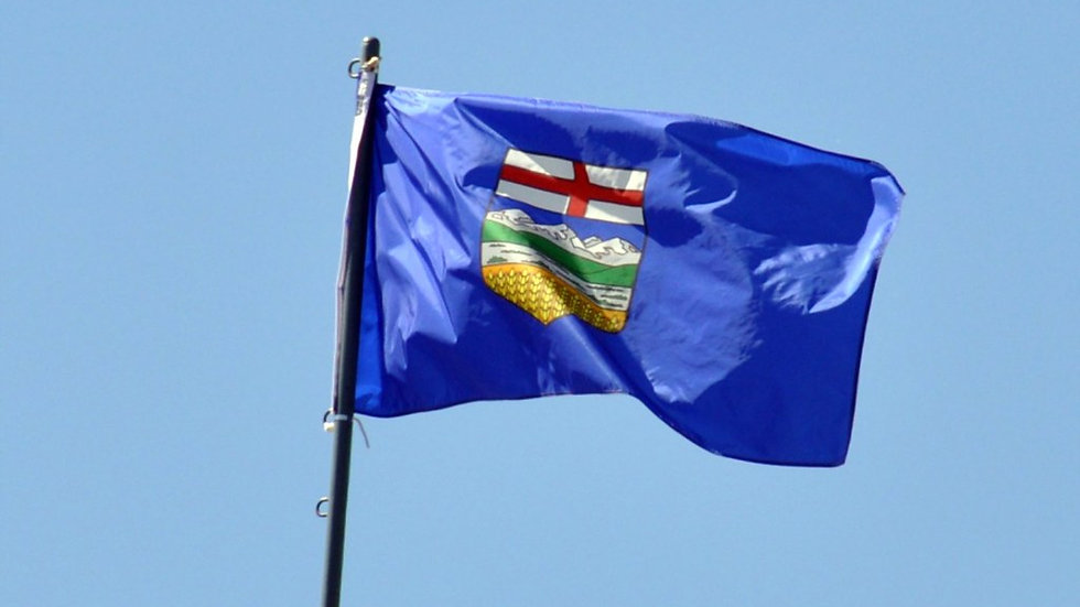 If I Were the Premier of Alberta in 2020, I Would...