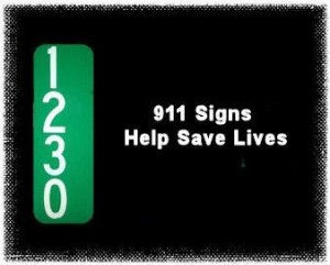 911-Saves-Lives-1a-300x241.jpg