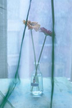 flower+bottle
