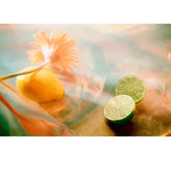 Citrus and flower