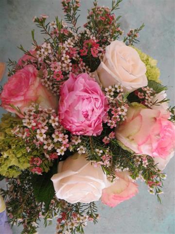 Peony & Roses