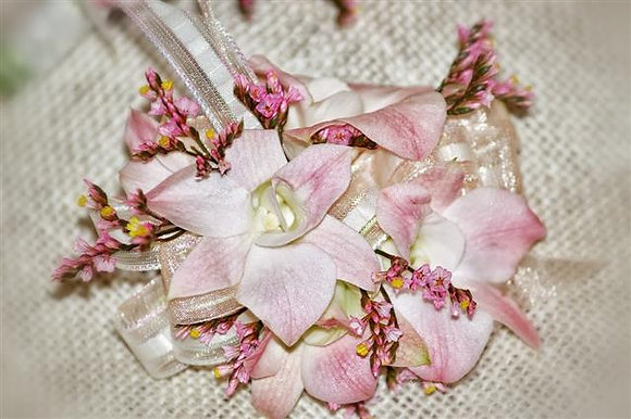 Blushing Orchids Set