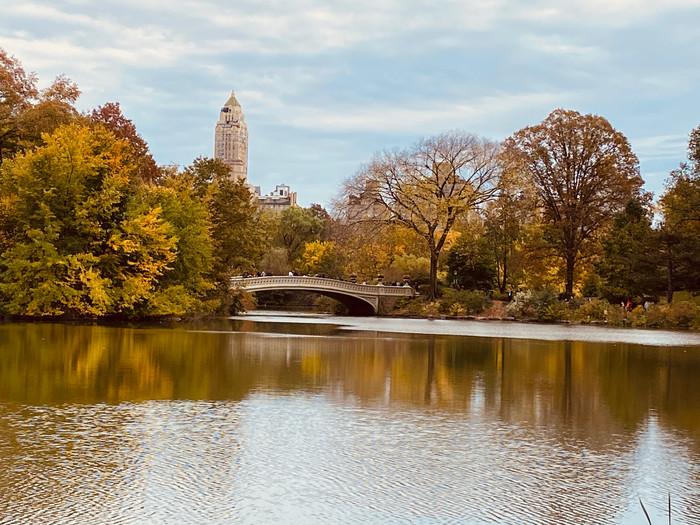 Um FDS de Outono em NY