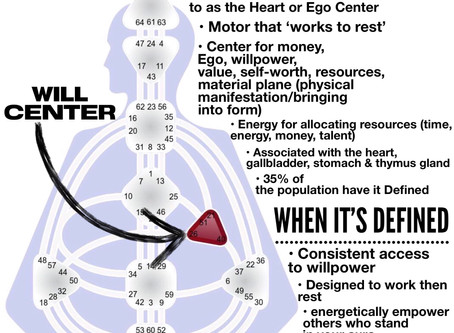 The Defined Will Center