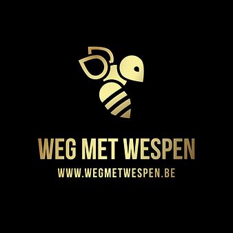 logo-Web-Gradient.png