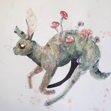 Shroom Hare