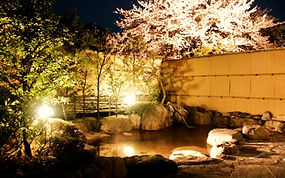 img_yuyukan_onsen01-1_edited.jpg