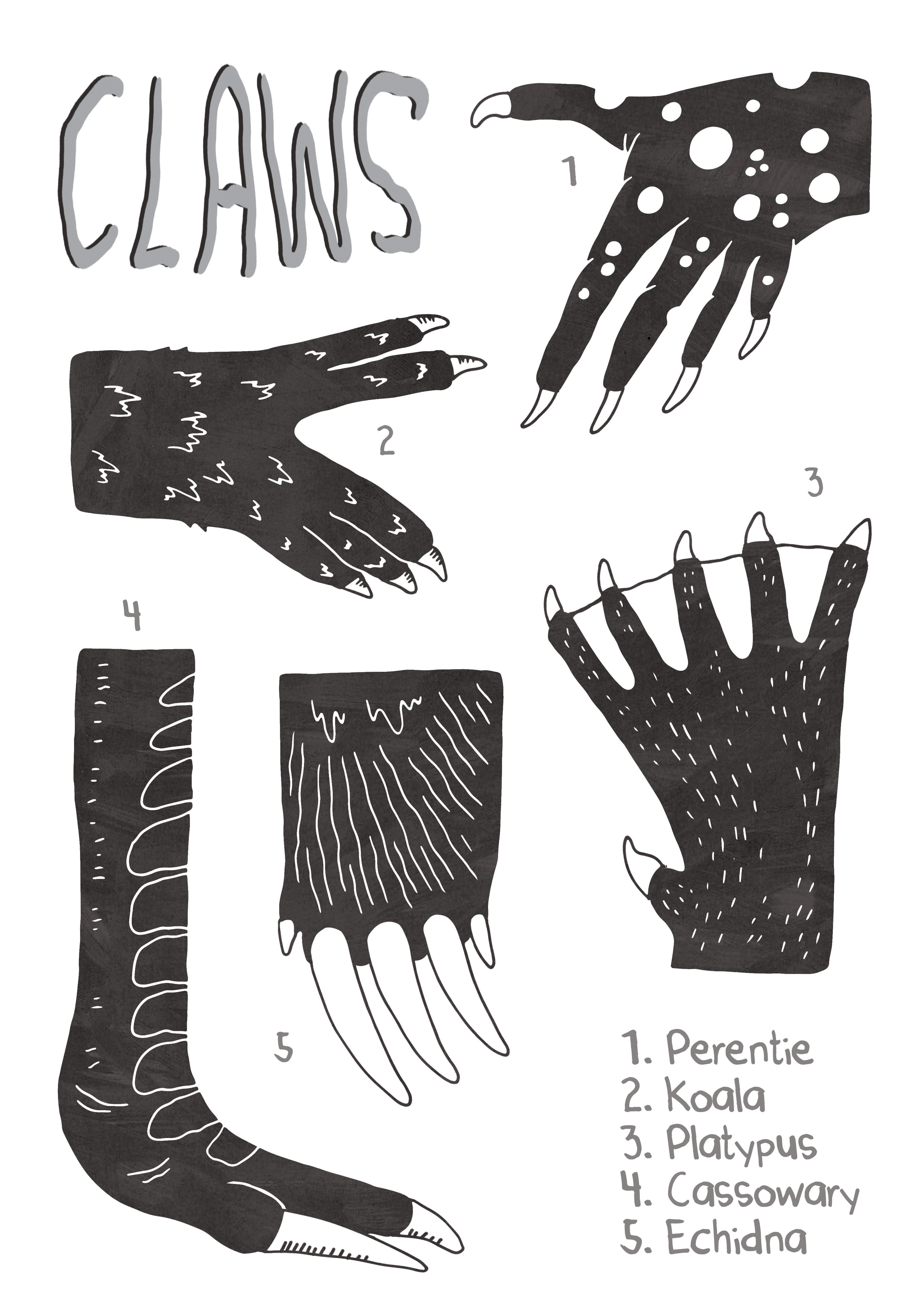 Animal Feet Black