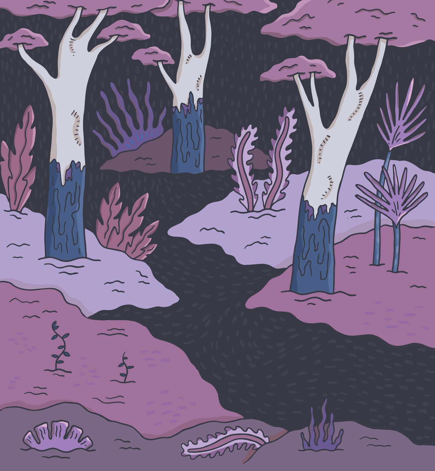 Nightforest
