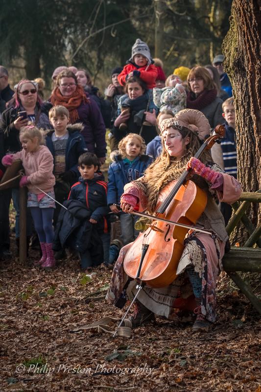 Woodland Performance