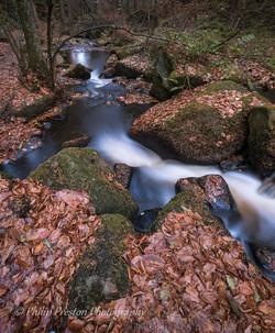 Wyming Brook, Sheffield