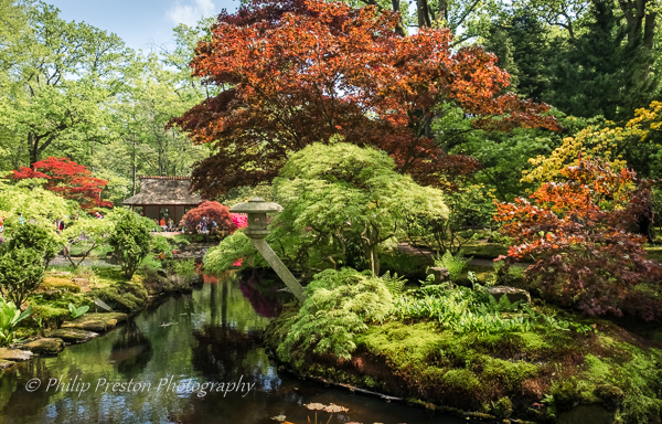Japanese Garden, Clingendael Park, The Hague