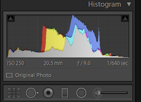 How To Make Your Photos Look Better - Digital Photo Editing Basics