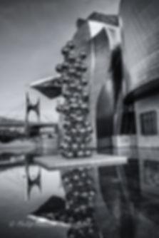 Monochrome photograph of the Guggenheim Museum, Bilbao, Spain