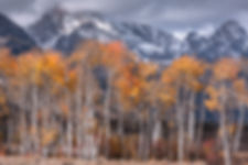 Autumn, Grand Teton National Park, Wyoming, USA
