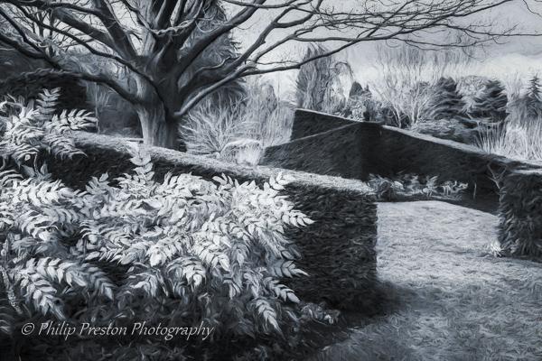 Harlow Carr Garden, Yorkshire
