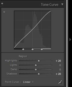 Lightroom Tone Curve panel for photo blog - Philip Preston photography