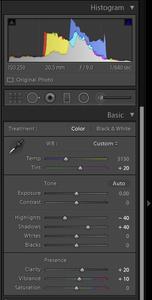 Lightroom Basic panel for photo blog - Philip Preston photography