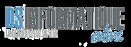 logo_DSI online.png
