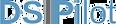 DSIPilot logo-PNG.png