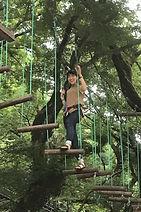 四国徳島の体験、大學生も遊べます!