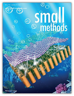 CoverPage - SMALL METHODS 2019.jpg