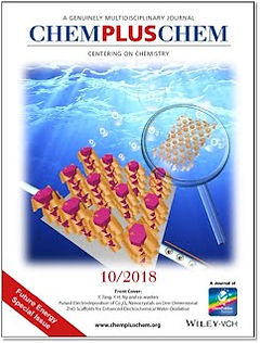 2018_ChemPlusChem - Cover.jpg