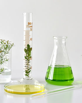 labbeakersandplants.jpg