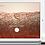 Thumbnail: API 100 Skin Analyzer