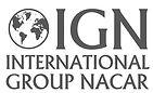 ign logo.JPG