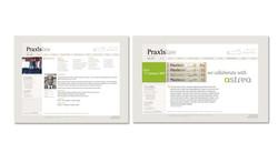 praxis2_web.jpg