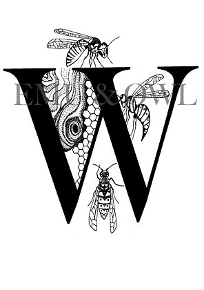 Wasps Letter W