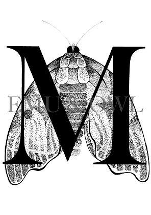 Moth Letter M
