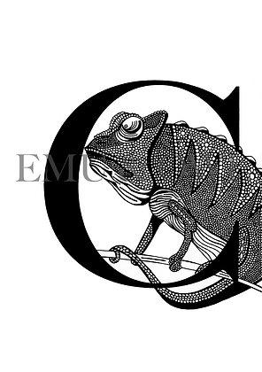 Chameleon Letter C