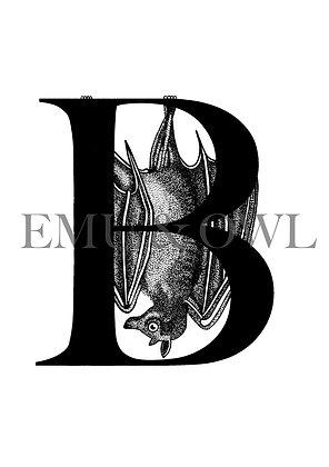 Bat letter B