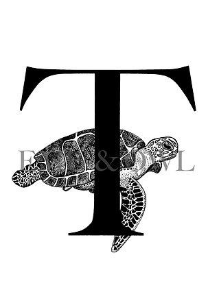 Turtle Letter T