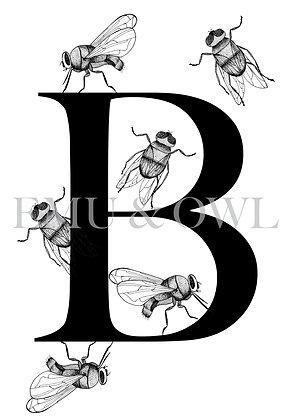 Blowflies Letter B