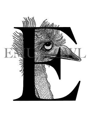 Emu Letter E