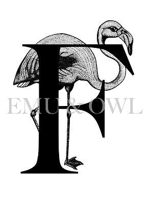 Flamingo Letter F