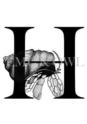 Hermit Crab Letter H