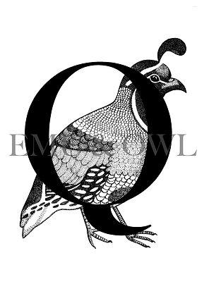 Quail Letter Q