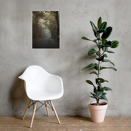 Poster glossy - Nebelfahrt Havelchaussee