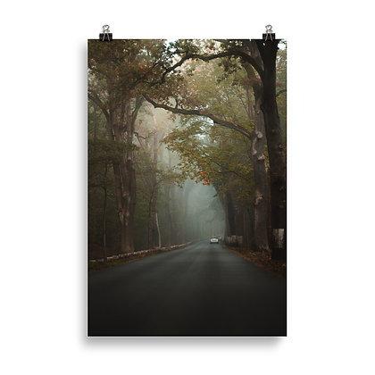 Poster matte - Nebelfahrt Havelchaussee