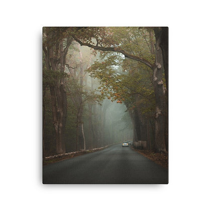 Canvas - Nebelfahrt Havelchaussee