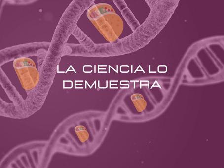 EL ADN DE GARNACHEANDO